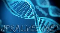 Microsoft Joins Hands with Twist Bioscience to Store Data-Using Synthetic DNA