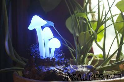 Glowing LED Mushroom Log Lamp