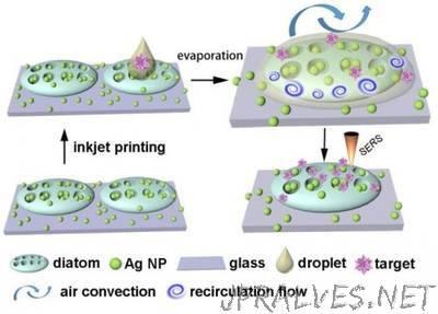 New 'optofluidic' technology taps power of diatoms to improve sensor performance