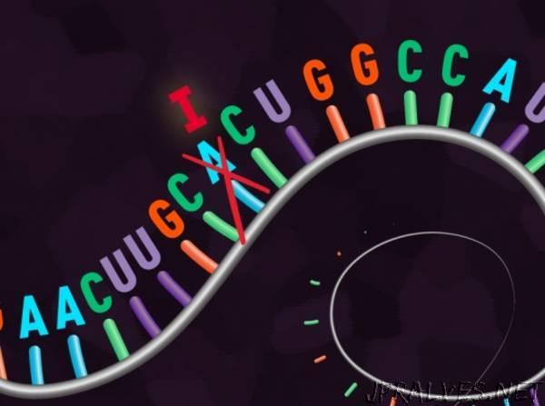Researchers engineer CRISPR to edit single RNA letters in human cells