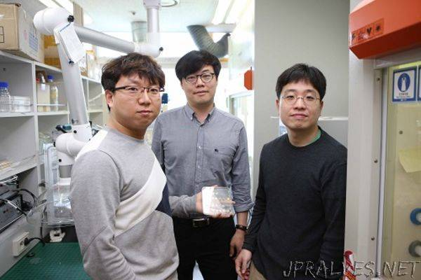 A High-Performance and Cost Effective Hydrogen Sensor