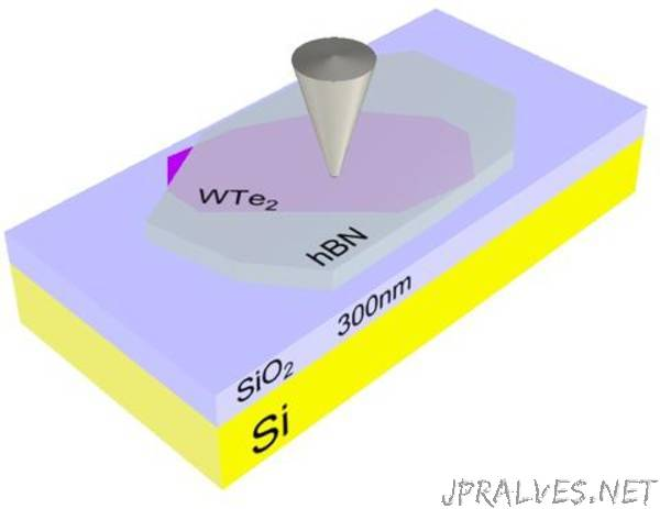 Scientists image conducting edges in a promising 2-D material