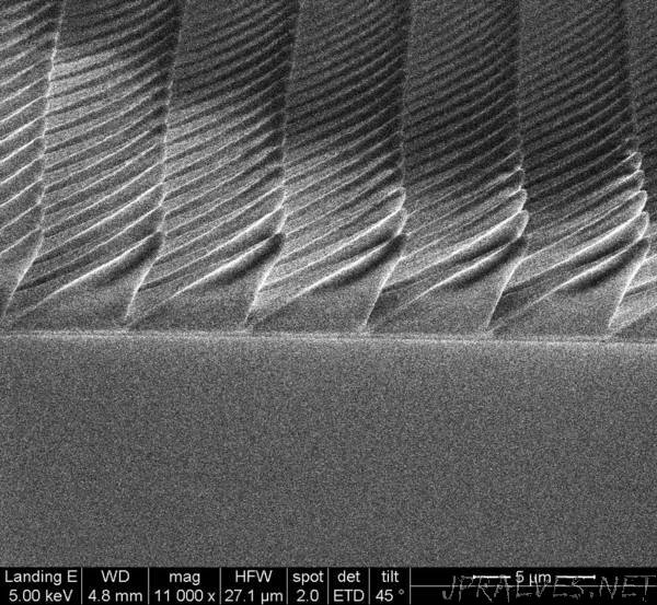 Firefly-inspired surfaces improve efficiency of LED lightbulbs