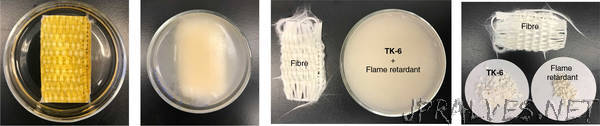 Dynamic polymer network points the way to truly recyclable plastics