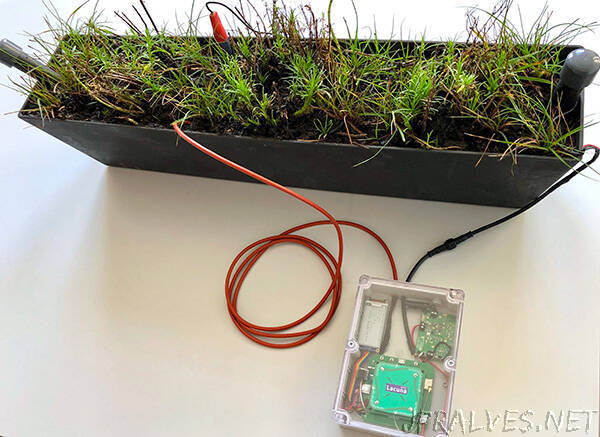 First plant-powered IoT sensor sends signal to space